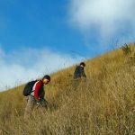 Pendakian Nyaris Gempor di Gunung Guntur (2245 mdpl): Kecil-Kecil Cabe Rawit!