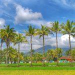 Salam dari Tasikmalaya! Catatan Perjalanan di Mutiara Priangan Timur: Dari Gunung Galunggung sampai Kampung Naga