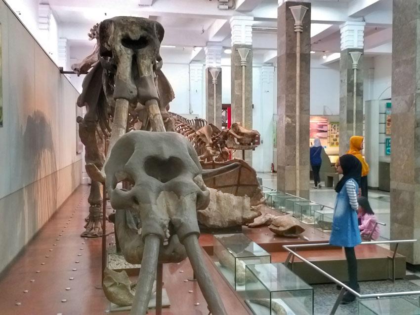 museum geologi bandung 1